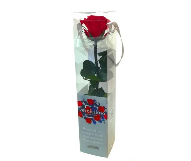 Роза на стебле мини (красная)